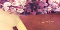 加倍学习网收集2013天津市直事业单位考试历年真题下载