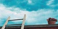 加倍学习网收集2013年山东临沂市市直事业编考试真题(部分回忆)